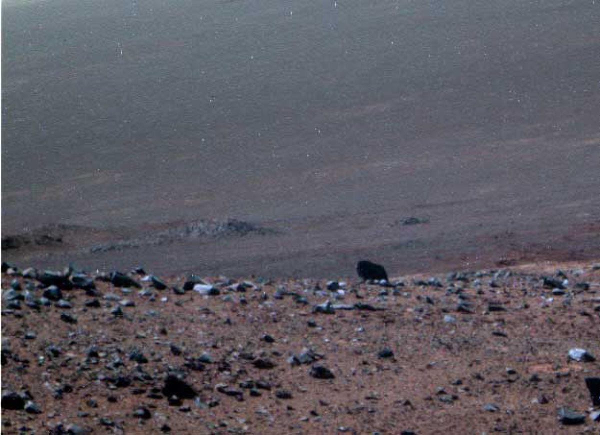 Марсианский бизон: страшная тайна Марса