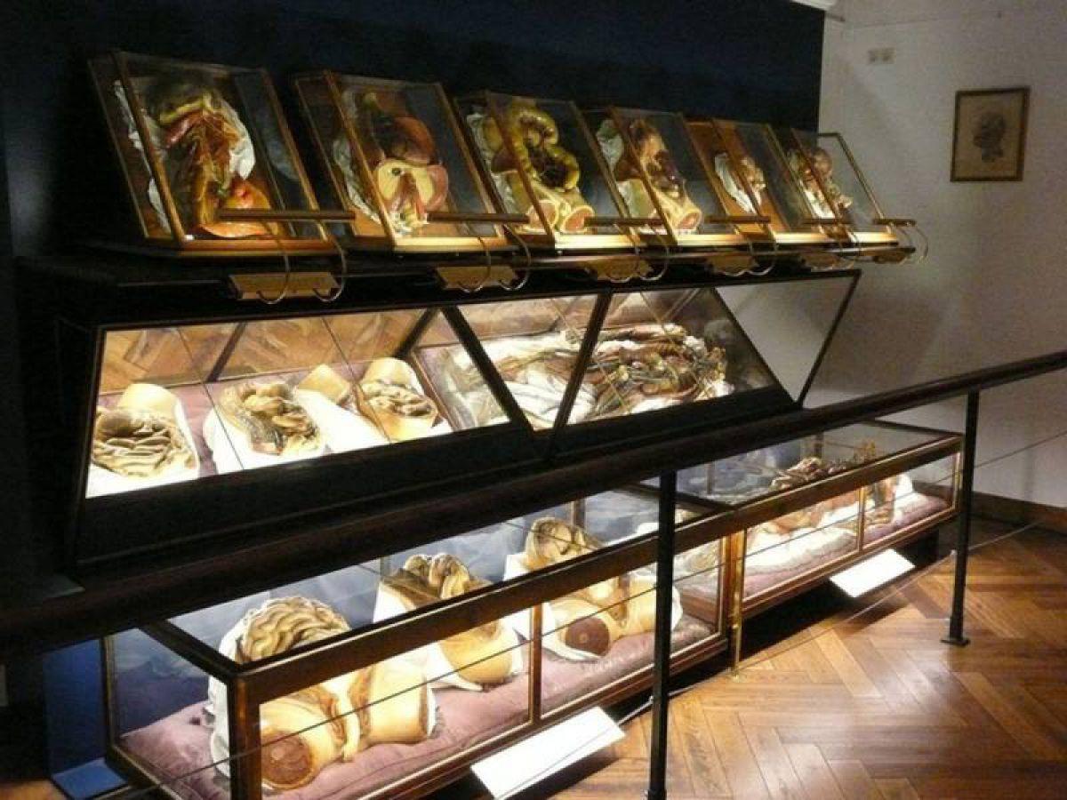 Ужасающие музеи мира