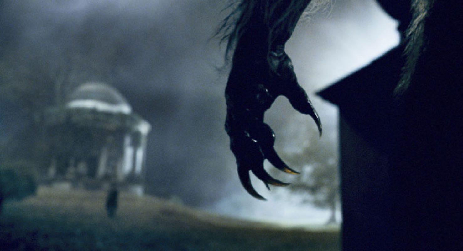 Оборотничество: тайна трансформации человека в зверя