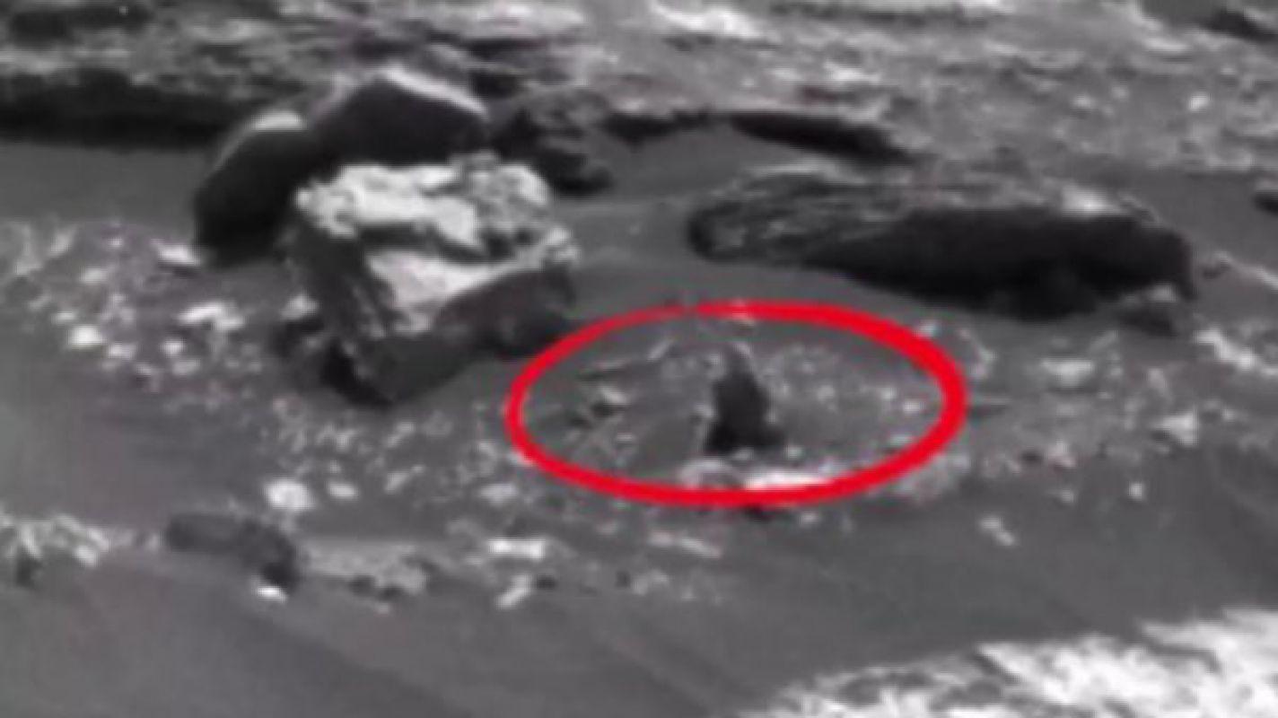 Уфологи обнаружили на Марсе вооружённого инопланетянина