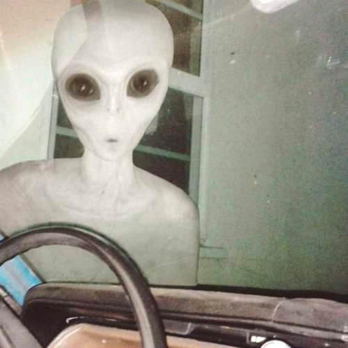 Мир обсуждает фото реального пришельца, стоящего впритык к камере