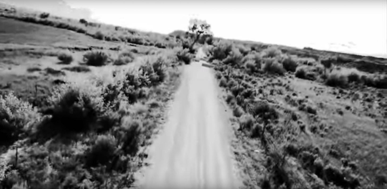 Певец Робби Уильямс рассказал о своей встрече с пришельцами в документальном фильме