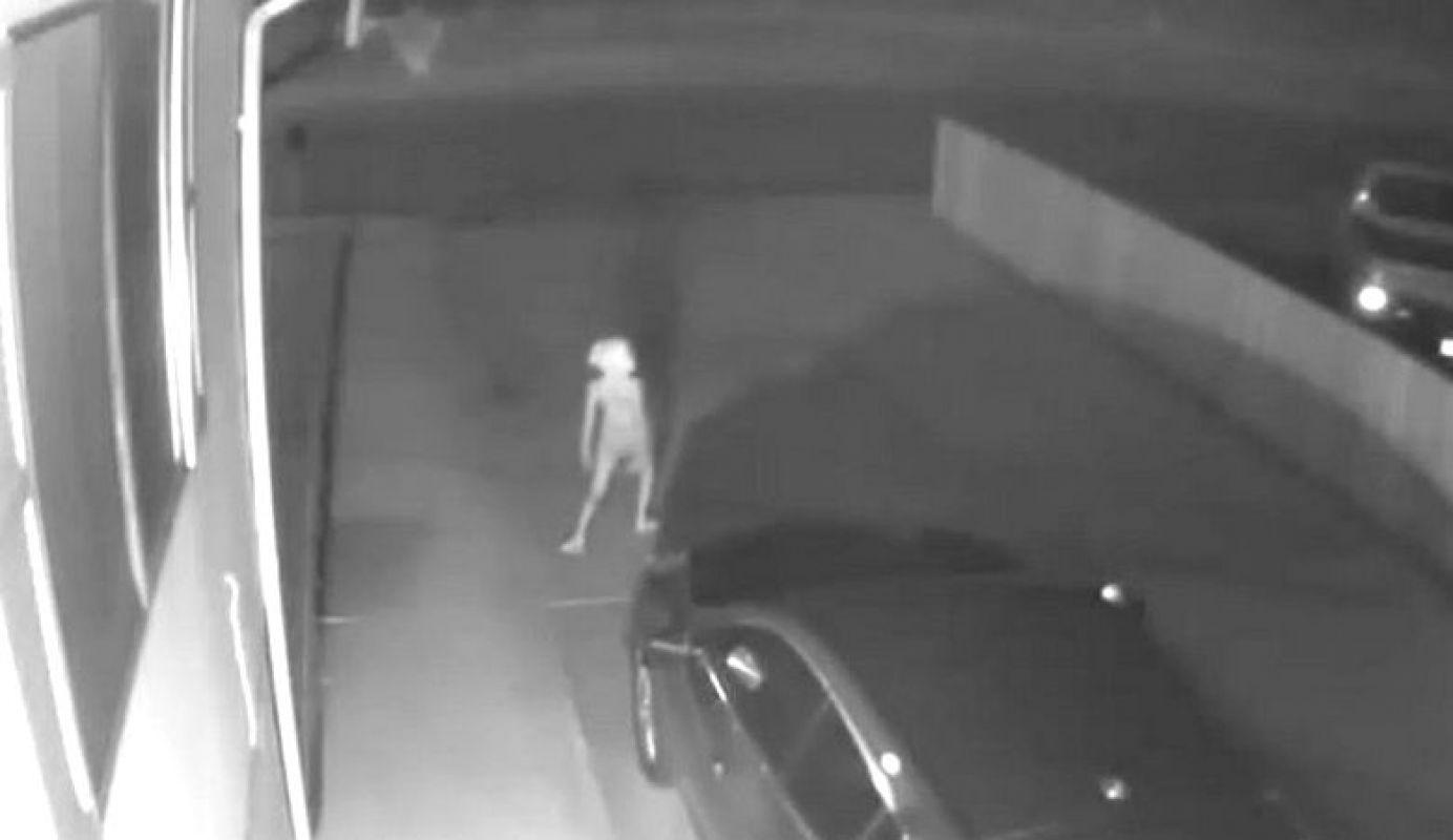Настоящий пришелец был снял на видео с близкого расстояния и удивил сеть