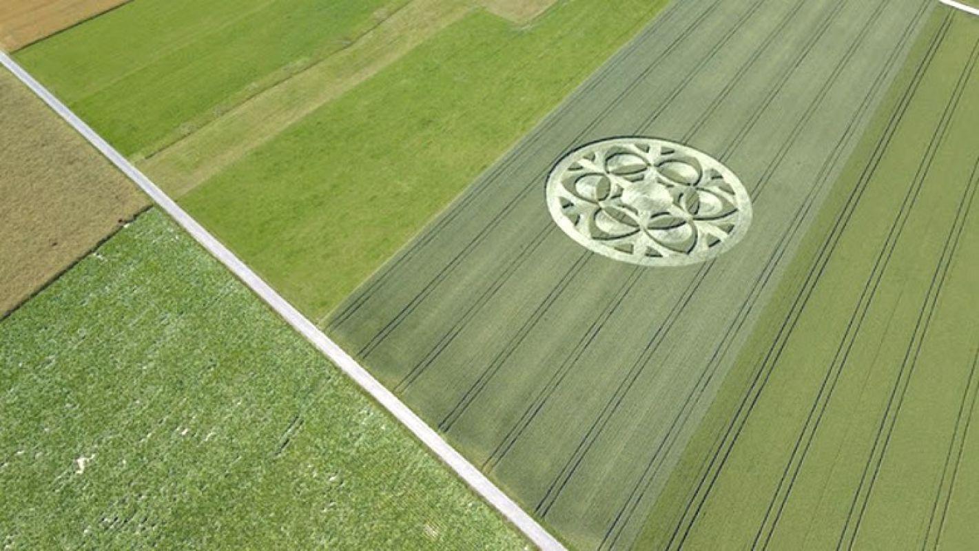 Неописуемо красивый рисунок появился на поле в Швейцарии