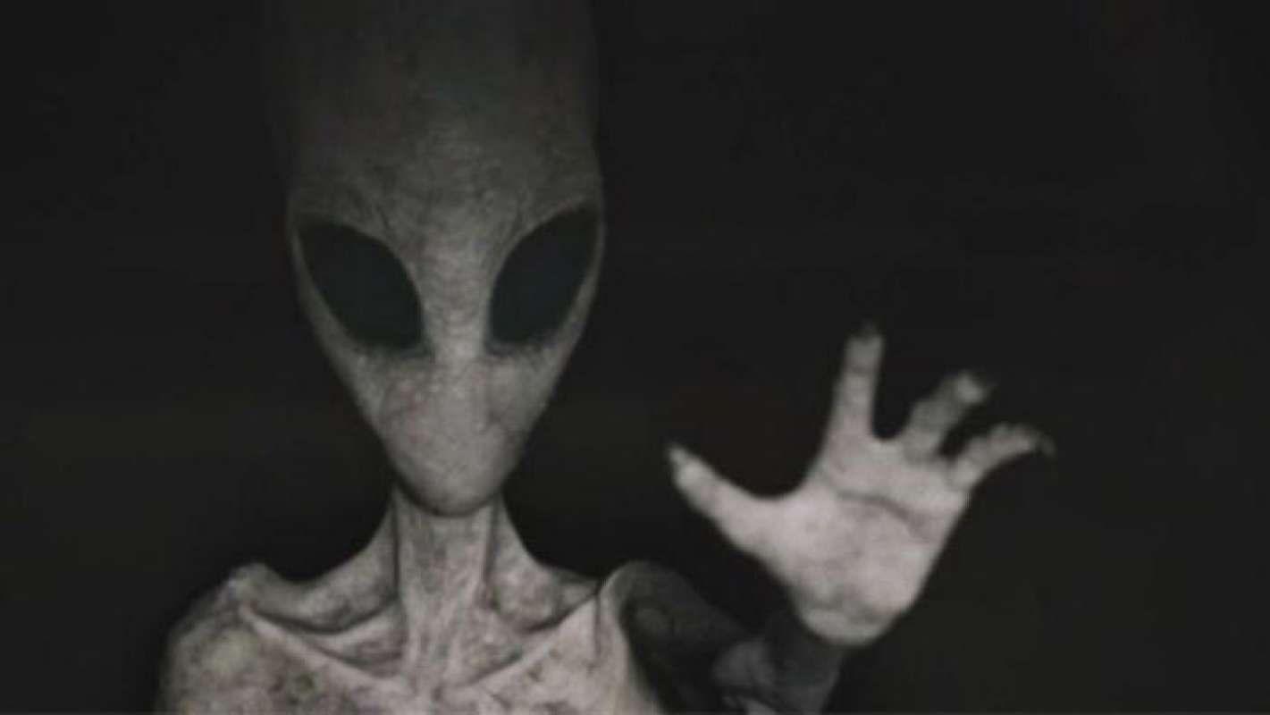 Дачник показал фото с настоящим пришельцем, который заглядывает в окно его дома