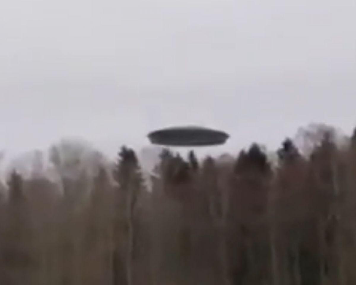 Впервые в России сняли шокирующее видео, в котором НЛО приземляется возле леса и высаживает пришельца