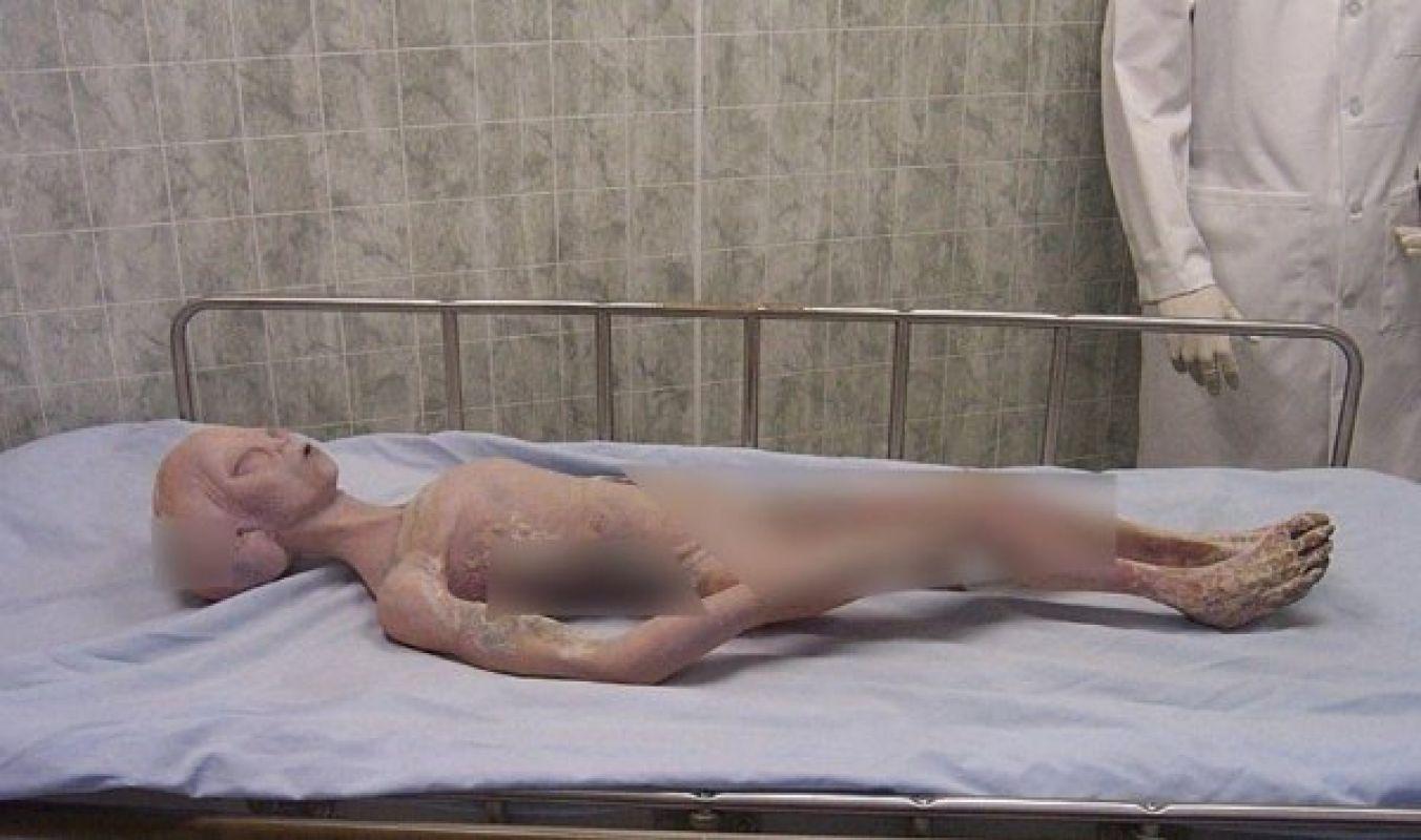 Впервые в «Зоне 51» на видео попало реальное крушение НЛО с близкого расстояния, и есть фото погибшего пришельца