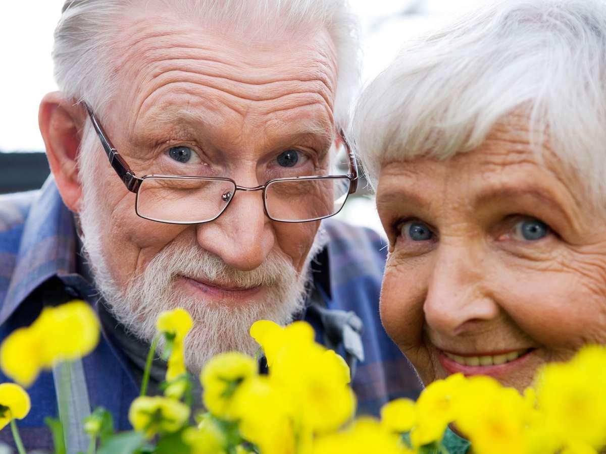 Пенисы старых людей