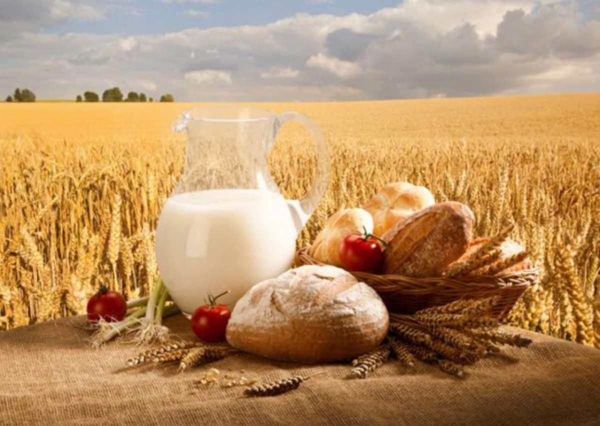 Доклад посвященный дню работников сельского хозяйства 3754