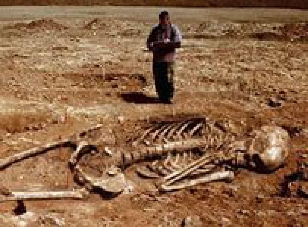 Секрети чорних архологов 17 фотография