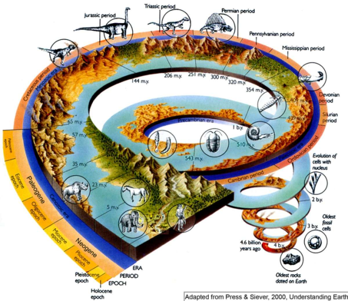 history of life on earth Describe the major events in earths history from its origin until 2 billion years ago in particular, note when earth first formed, when life first evolved, and define geological record the division of earths history into time periods grouped into 3 eons archean, proterozoic, and phaneroic, and further.