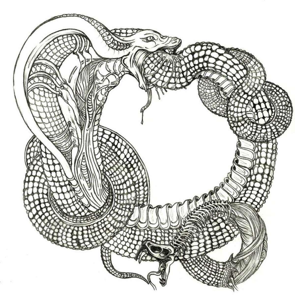 Мировой Змей – религиозные тайны различных народов мира