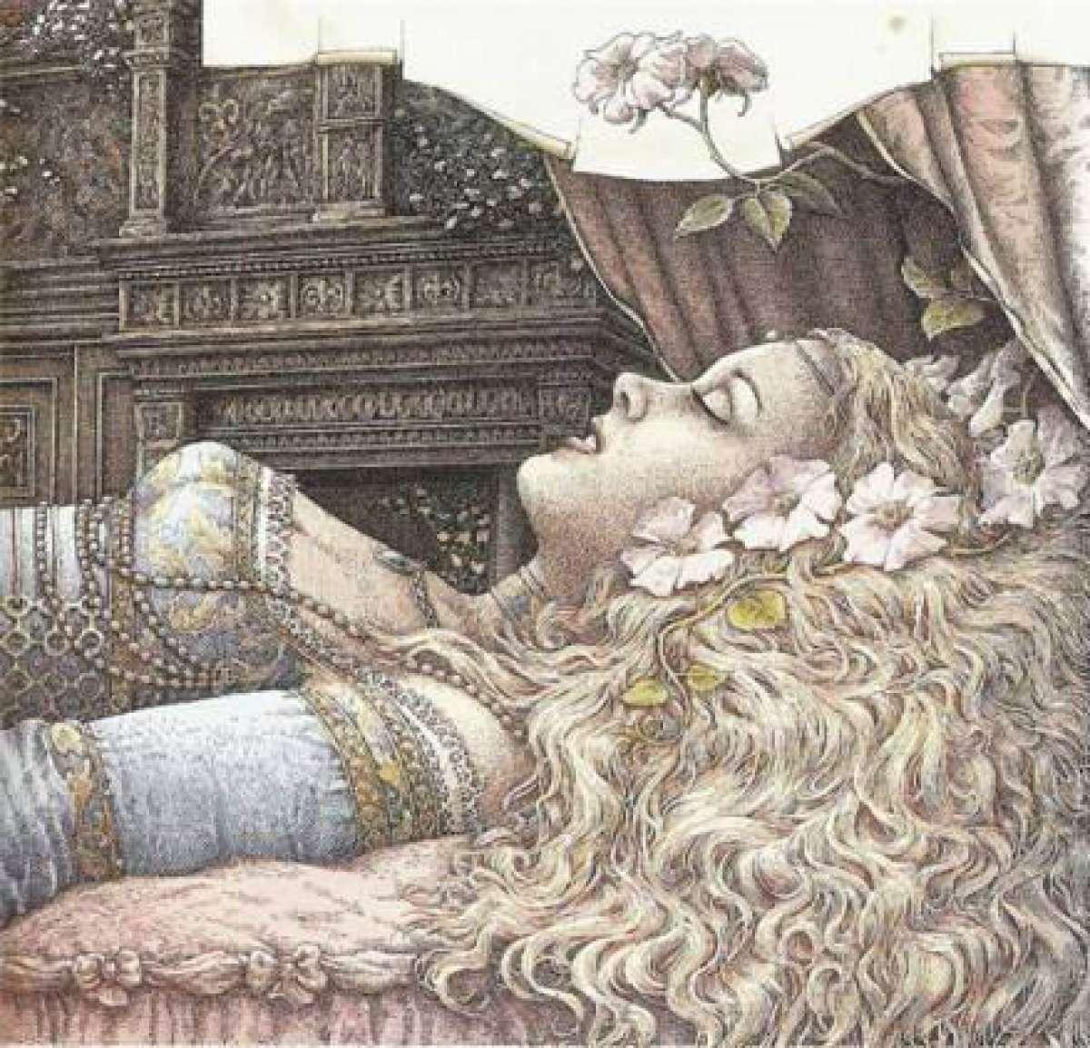 Спящая красавица текст 21 фотография