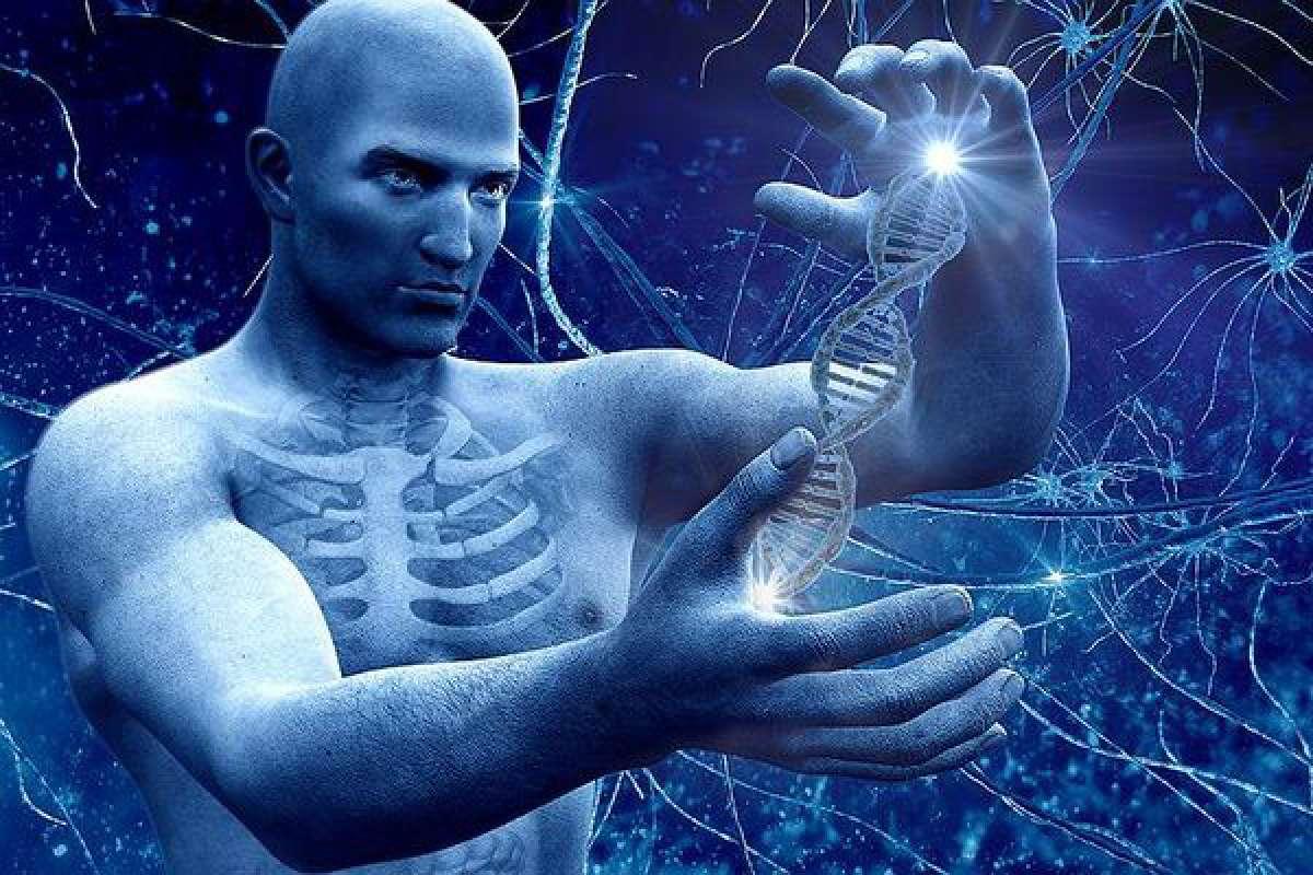 США планируют снять запрет на генную модификацию человека