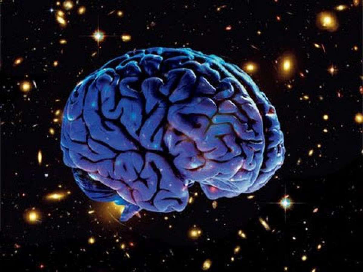 Учёные выяснили, что происходит с мозгом в невесомости