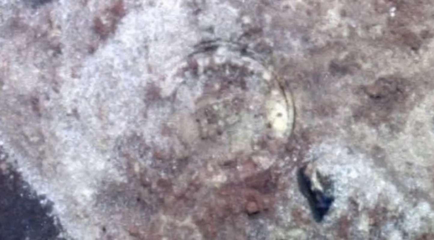 Уфологи обнаружили на Марсе диск шумеров