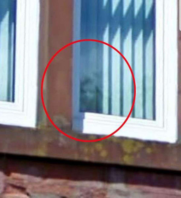 Шотландка заметила лицо инопланетянина в окне квартиры, в которой когда-то жила