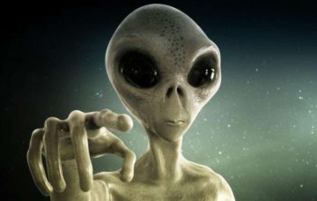 В сети появилось фото реального пришельца из Новой Зеландии