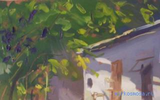 снится спелый виноград зеленый кушать чему к
