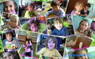 Дети — Сонник крылатых фраз