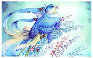 почему сниться птица