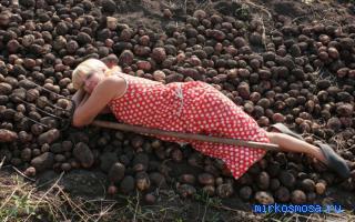 Ковыряться в земле во сне к чему снится