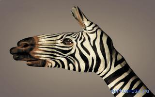 Сонник видеть свои руки в браслетах фото 760