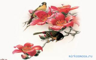 Птица по соннику
