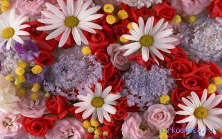 К чему снится рвать полевые цветы