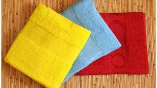 День полотенца