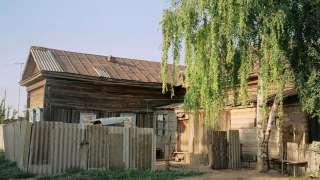 Аномальная зона в селе Красный Яр, уничтожающая домашних животных