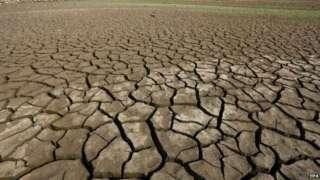 Ученые утверждают – наша планета вступила в сверхновую форму вымирания