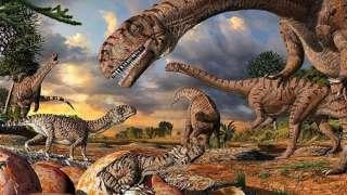 Исследователи древности обнаружили массовое скопление останков, возраст которых превышает 400 миллионов лет