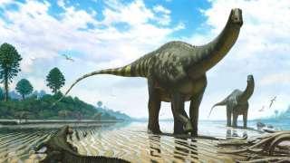 Немецкие палеонтологи обнаружили останки огромного 30-тонного доисторического животного