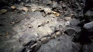 На территории заповедной зоны Мехико раскопали стену из человеческих черепов времен ацтеков