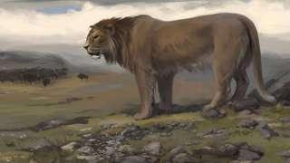 На Урале палеонтологи обнаружили останки древних пещерных хищников