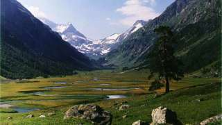 Таинственная долина «Джатинга» (Индия)
