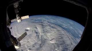 Ученые NASA обнаружили у космонавтов МКС изменения в иммунной системе
