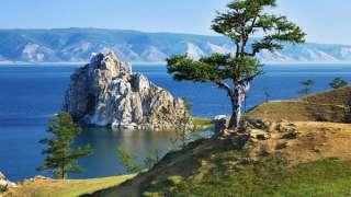 На Байкале ученые заметили масштабную перестройку экосистемы