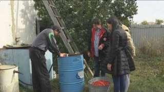 В Павлодарской области нечто подогревает грунтовые воды до 70 градусов