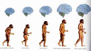 Почему мы так и не нашли ответ на вопрос: как и когда появился человек?