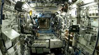 На борту МКС могут присутствовать потенциально болезнетворные микроорганизмы