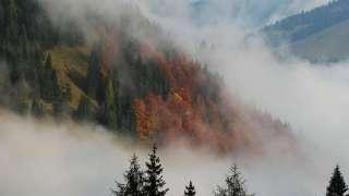 Землю покроют туманы и смог
