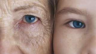 В 2016 году будут проводиться официальные испытания лекарства от старости на людях
