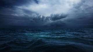 Загадочные формы жизни заполняют океаны