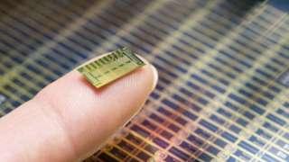Ученые создали первый «живой» кремниевый микрочип