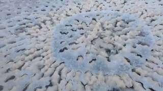 Странный след на замерзшем озере обнаружили в штате Юта