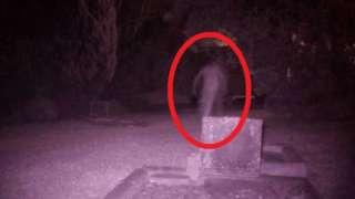 В западной части Сиднея уфологи сфотографировали призрака на кладбище