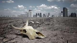 Ученые выяснили, как выжить в ходе массового вымирания
