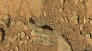Динозавры на Марсе